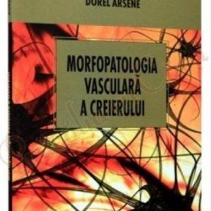 Morfopatologia vasculară a creierului
